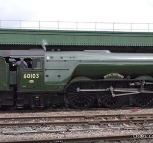 A3 Flying Scotsman DCC Sound Decoder